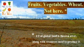 1/3 of All Food is Wasted