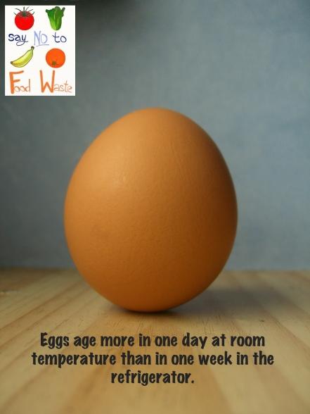 The Egg