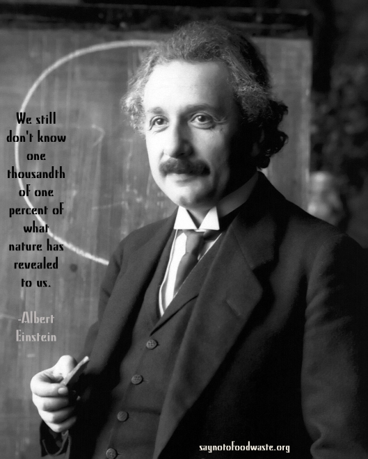 einstein.quote.life.happy.nature.sustainable.give.care.love.foodforthought.foodquote