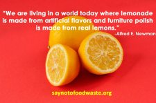 foodquote.saynotofoodwaste.happy.healthy.sustainable.quote.life.inspiraiton.live.love.laugh.3