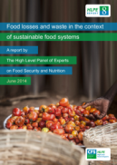 foodwaste.loss.sustainability.UN.report.foodsystems.highlevelpaneloexertsonfoodsecurityandnutrition.green.environment.foodsecurity.saynotofoodwaste.food