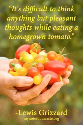 saynotofoodwaste.foodquote.wisdom.quote.life.sustainable.happy1.
