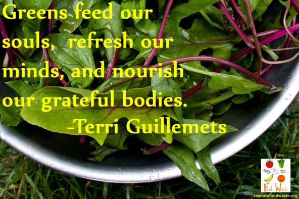 saynotofoodwaste.foodquote.wisdom.quote.life.sustainable.happy2
