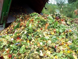 Food Waste generation stream