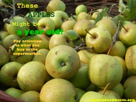 yearoldapples.apples.apple.green.sustainable.supermarket.gmo.old.saynotofoodwaste.buylocal.healthy.