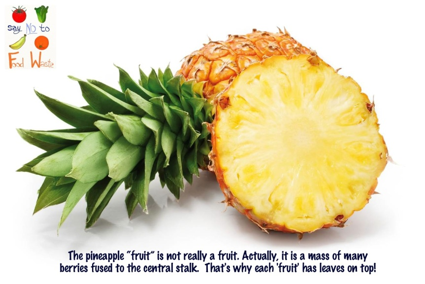 Fact no. 1- Pineapple