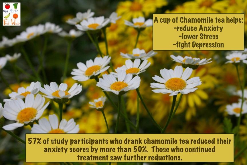 Chamomile can healanxiety!!