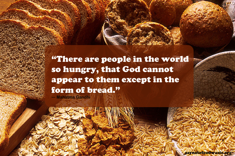 Hunger Quotes Stunning Food Quote  Hunger  Say No To Food Waste