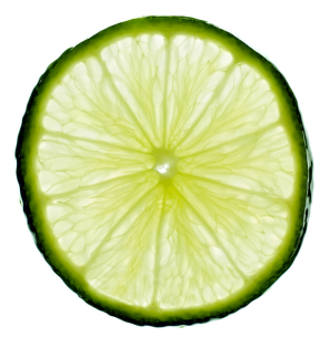 lime.green.limencello.happy.fun.mexico.cincodemayo.feliz.vida.saynotofoodwaste.1