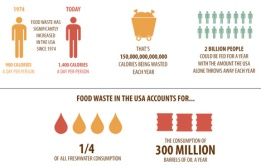 food-waste-graphs.treehugger.foodwaste.saynotofoodwaste.sustainable.nature.share.care.love.give.happy.