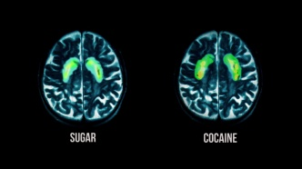 "Sugar triggers a similar dopamine ""reward"" response in the brain as cocaine. (Photos: Radius-TWC)"