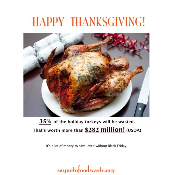 Thanksgiving Waste
