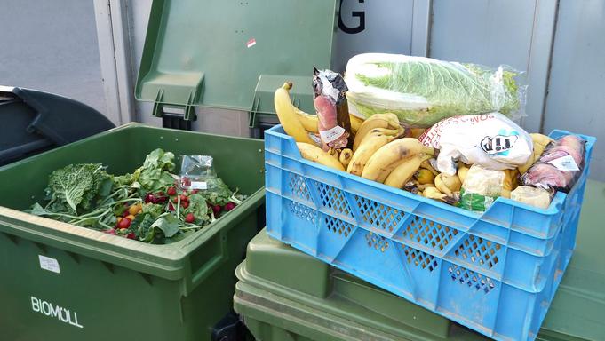 Food Waste Back On The Menu