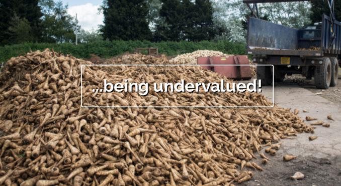 saynotofoodwaste.waste.stop.foodis.chrisking.uk.activism.foodwaste.sustainability.1