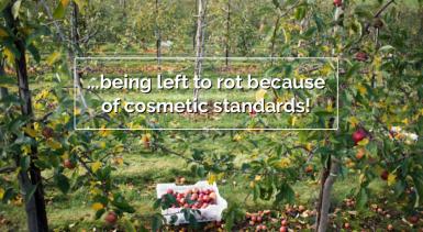 saynotofoodwaste.waste.stop.foodis.chrisking.uk.activism.foodwaste.sustainability.4