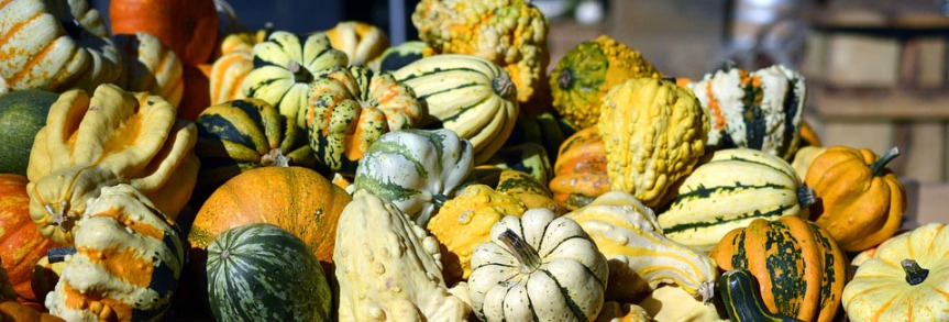 How to Use Fall Fruits andVegetables