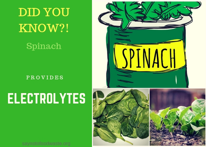 spinach.didyouknow.saynotofoodwaste.local.sustainable.seasonal.1.jpg