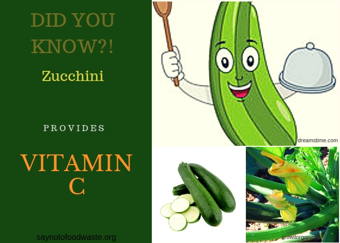 zucchini.didyouknow.saynotofoodwaste.local.sustainable.seasonal.1