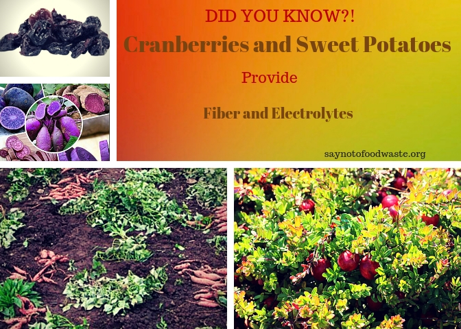 cranberries.sweetpotato.saynotofoodwaste.didyouknow.1