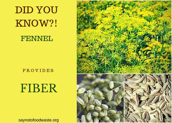 fennel.didyouknow.saynotofoodwaste.facts